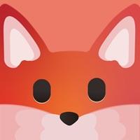 tantok V1.0.5 安卓版